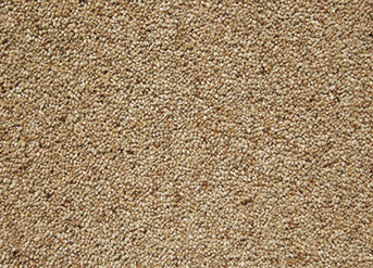 Abingdon Charter Supreme Gold Range at Surefit Carpets